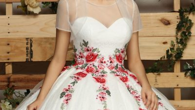 Quinceanera Dress Color Trends: Multi-Color